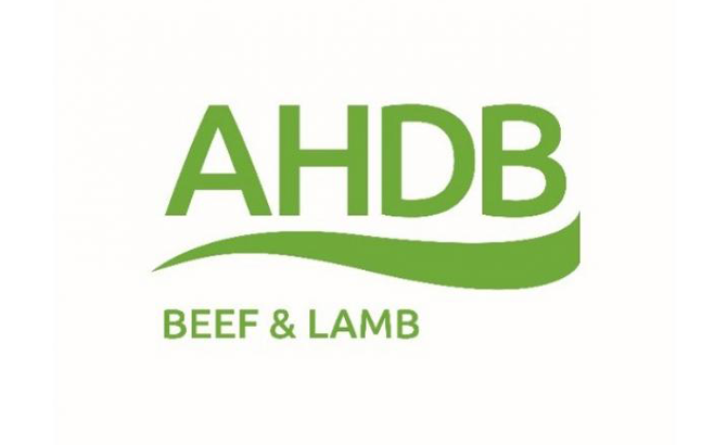 AHDB calls farmers to shout about the sire